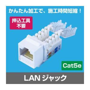 Cat.5e RJ45 LAN用ジャック(壁面端子・ローゼット用)(LANケーブル インターネット配線)(e3510)
