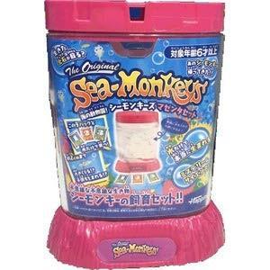 海の動物園!シーモンキーズ マゼンタセット 4907953814653|yousay-do