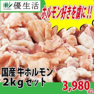 国産 牛 ホルモン 2kg セット
