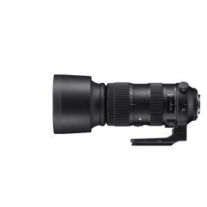 SIGMA 超望遠ズームレンズ 60-600mm F4.5-6.3 DG OS HSM   Sports S018 NIKON-Fマウント用 フルサイズ対応 yrkstore