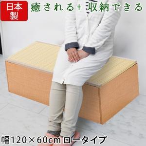 樹脂畳ユニットボックス 高床 ロー 幅120×60cm ナチュラル 畳収納ユニット 収納スツール 収納畳 高床式 畳ボックス 畳ベンチ 畳ベッド 畳収納ボックス 腰掛け|ys-prism