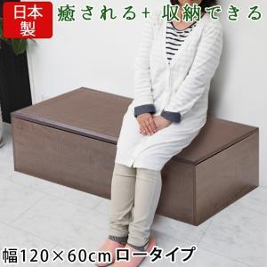 樹脂畳ユニットボックス 高床 ロー 幅120×60cm ブラウン 畳収納ユニット 収納スツール 収納畳 高床式 畳ボックス 畳ベンチ 畳ベッド 畳収納ボックス 腰掛け|ys-prism