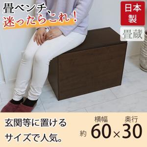 樹脂畳ベンチ 幅60×30cm ブラウン 畳ユニット 畳収納ユニット 収納スツール 収納畳 ユニット畳 高床式 畳ボックス 畳ベンチ 畳ベッド 畳収納ボックス 腰掛け|ys-prism