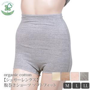 オーガニックコットン【シュガーレングス】腹巻きショーツ ソフトフィット /Leaf Cube Organic (すっぽり インナー 下着 レディース 婦人 女性用 おしゃれ)|yshopharmo