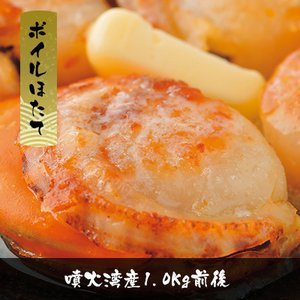 【マタツ水産】ボイルほたて 1kg前後 色んなお料理に 噴火湾 yskaisyoh311