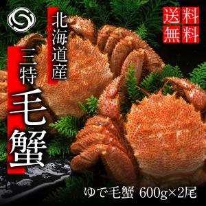 毛がに姿 500g前後×2尾 送料無料【かに カニ 蟹】|yskaisyoh311
