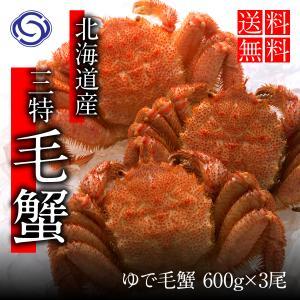 毛がに姿 500g前後×3尾 送料無料【かに カニ 蟹】|yskaisyoh311