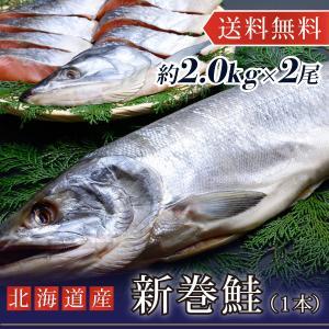 鮭 さけ 新巻鮭 2.0kg前後 2尾 化粧箱入 北海道|yskaisyoh311