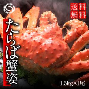 タラバがに姿 1.5kg前後 茹でたて急速冷凍 送料無料【蟹 かに カニ】|yskaisyoh311