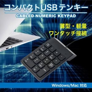 テンキー USB テンキ ブラック 有線 接続 軽量 薄型 静音|ysmya