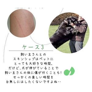 メルランド ペット用 電動爪トリマー 電動爪やすり 犬用 猫用 柴犬 爪切り 爪やすり 爪削り 安全 ネイルケア コードレス グラインダー 小型犬 中型犬 大型犬|ysmya|04