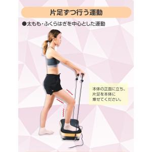 シェイカー式 振動マシン 1分間800回 振動99段階 静音 ダイエット 効果的 ブルブル振動マシン 5モード ゴムハント付き PSE認証 日本語説明書 TOKAI 公式販売|ysmya|13