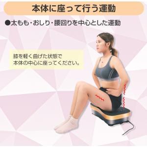 シェイカー式 振動マシン 1分間800回 振動99段階 静音 ダイエット 効果的 ブルブル振動マシン 5モード ゴムハント付き PSE認証 日本語説明書 TOKAI 公式販売|ysmya|14