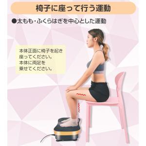 シェイカー式 振動マシン 1分間800回 振動99段階 静音 ダイエット 効果的 ブルブル振動マシン 5モード ゴムハント付き PSE認証 日本語説明書 TOKAI 公式販売|ysmya|15