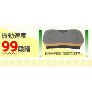 シェイカー式 振動マシン 1分間800回 振動99段階 静音 ダイエット 効果的 ブルブル振動マシン 5モード ゴムハント付き PSE認証 日本語説明書 TOKAI 公式販売|ysmya|05