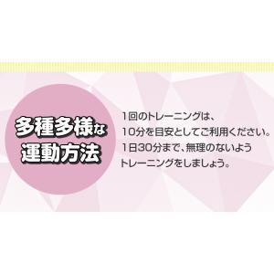 シェイカー式 振動マシン 1分間800回 振動99段階 静音 ダイエット 効果的 ブルブル振動マシン 5モード ゴムハント付き PSE認証 日本語説明書 TOKAI 公式販売|ysmya|10