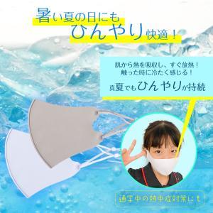 6枚セット 冷感マスク 日本製コーティング 大きめ 子供用 小さめ 洗える 夏用 秋用 接触冷感マスク  涼感 涼しい ひんやり ウイルス 防塵 花粉 飛沫対策|ysmya|10