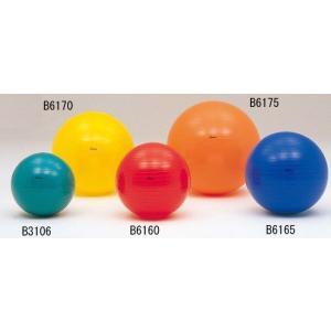 ボディーボール55 B6160|ytshop