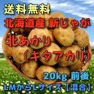 予約 北海道産 新じゃがいも 北あかり 20kg 前後 (きたあかり・キタアカリ) (LMからLサイズ【混合】)|yubari-shouten