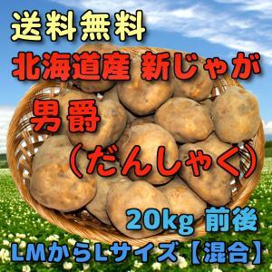 予約 北海道産 新じゃがいも 男爵  20kg 前後 (だんしゃく・ダンシャク)  (LMからLサイズ 【混合】)|yubari-shouten