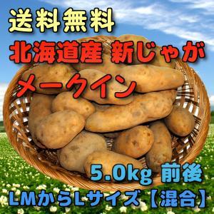 予約 北海道産 新じゃがいも メークイン 5kg 前後 (LMからLサイズ 【混合】)|yubari-shouten