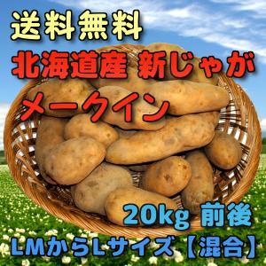 予約 北海道産 新じゃがいも  メークイン 20kg 前後 (LMからLサイズ 【混合】)|yubari-shouten