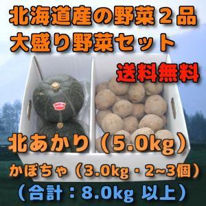 北海道産 野菜セット 2品 合計 8kg 前後 北あかり 5kg 北あかり キタアカリ 新じゃがいも...