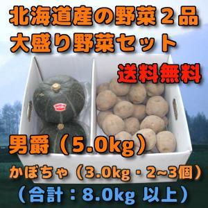 北海道産 野菜セット 2品 合計 8kg 前後 男爵 5kg だんしゃく ダンシャク 新じゃがいも ...