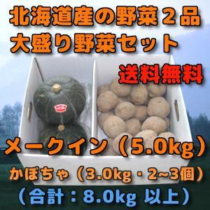 北海道産 野菜セット 2品 合計 8kg 前後 メークイン 5kg 新じゃがいも かぼちゃ 3kg ...
