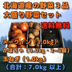 北海道産 野菜セット 3品 合計 7kg 前後  メークイン 3kg 新じゃがい かぼちゃ 3kg ...