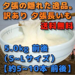 北海道夕張市産 訳あり 夕張長いも 5kg前後 SからLサイズ 約5本から10本前後|yubari-shouten