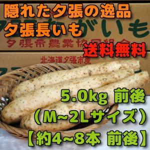 北海道夕張市産 夕張長いも 5kg前後 Mから2Lサイズ 約4本から8本前後|yubari-shouten