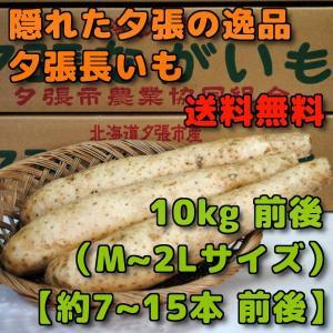 北海道夕張市産 夕張長いも 10kg前後 Mから2Lサイズ 約7本から15本前後|yubari-shouten