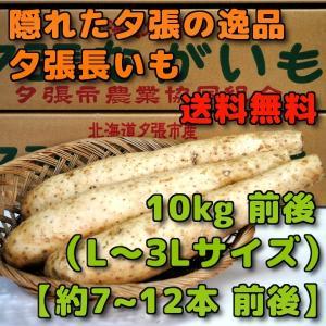 北海道夕張市産 夕張長いも 10kg前後 Lから3Lサイズ 約7本から12本前後|yubari-shouten