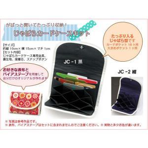 簡単にできるパナミの『じゃばらカードケースキット』(取り寄せ商品)|yucasiho