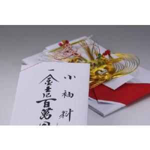 結納金袋(赤白)寿宝船|yuinou-com|03