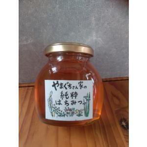 やまぐちさん家の純粋はちみつ230g|yuiyui-k
