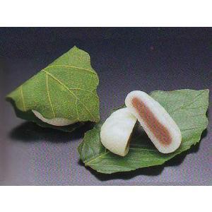 徳用 柏もち 20個入 和菓子 (かしわもち 柏餅 かしわ餅) [冷凍] |yukawa-netshop