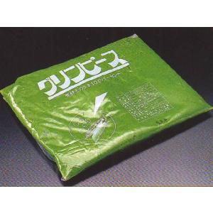 グリーンピースペースト 1kg (グリンピース) [冷凍]|yukawa-netshop
