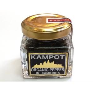 塩漬けコショー 23g瓶 (生こしょう 胡椒 KAMPOT カンポットペッパー) [常温]|yukawa-netshop