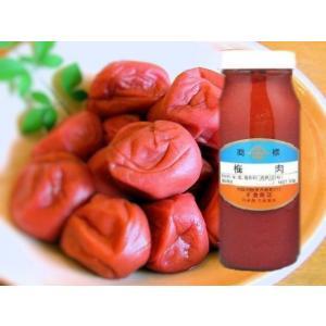 梅肉 【赤】 300g 瓶入 (瓶込:約550g 国産 うめ ばいにく あか) [常温]|yukawa-netshop