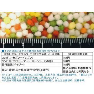 五色あられ 100g お試しパック (ネコポス発送の送料込【郵便受投函】) [常温限]|yukawa-netshop|03