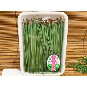 国産 松の葉 パック入(約50g入 あしらい 緑色 松葉 串) [冷蔵]|yukawa-netshop