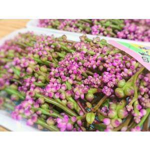 四国産 つるむらさきの花  (ツルムラサキの花 ) [冷蔵] yukawa-netshop