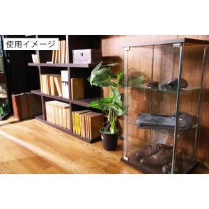 4面 ガラス コレクションケース 3段  <ガラス 透明 フィギュア コレクション 趣味 ディスプレイ 収納 飾る ラック キャビネット 人気 BOX 96049> yukimi-kagu 17