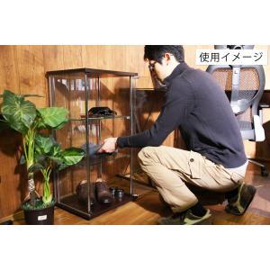 4面 ガラス コレクションケース 3段  <ガラス 透明 フィギュア コレクション 趣味 ディスプレイ 収納 飾る ラック キャビネット 人気 BOX 96049> yukimi-kagu 19