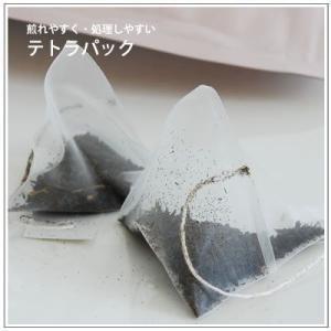深蒸し茶の掛川からお届け  掛川紅茶 テトラパック25包 780円|yukiusagi|04