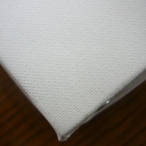 アクア フラット張りキャンバス F3|yumegazai