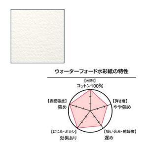 WATERFORD ウォーターフォード水彩紙 1/8 (190g) ナチュラル 中目 280×190mm 4枚入り yumegazai