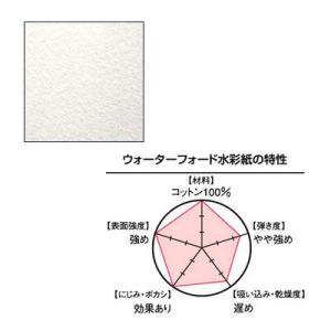 WATERFORD ウォーターフォード水彩紙 1/4 (300g) ナチュラル 細目 380×280mm 2枚入り yumegazai